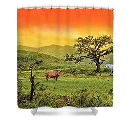 Shower Curtain featuring the photograph Dreamland by Charuhas Images