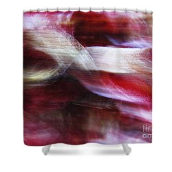 Dreamscape-3 Shower Curtain