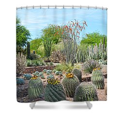 Dreamy Desert Cactus Shower Curtain