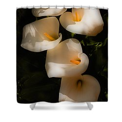 Dreamy Lilies Shower Curtain by Mick Burkey
