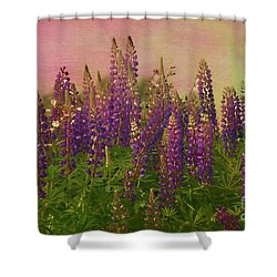 Dreamy Lupin Shower Curtain by Deborah Benoit