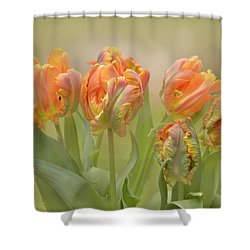 Dreamy Parrot Tulips Shower Curtain
