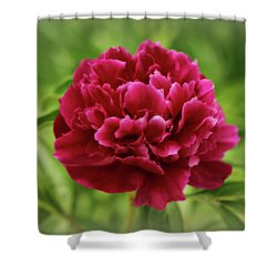 Dreamy Peony Shower Curtain by Sandy Keeton