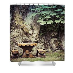 Dreamy Picnic  Shower Curtain by Michele Cornelius