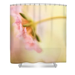 Shower Curtain featuring the photograph Dreamy Pink Flower by Bonnie Bruno
