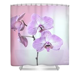 Shower Curtain featuring the photograph Dreamy Pink Orchid by Linda Phelps