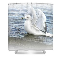 Dreamy Seagull Shower Curtain