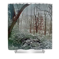 Shower Curtain featuring the photograph Dreamy Snow by Sandy Moulder