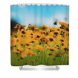 Dreamy Summertime Shower Curtain