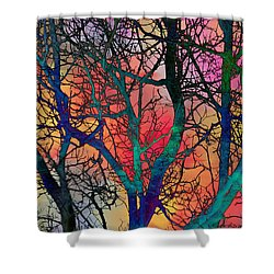 Shower Curtain featuring the digital art Dreamy Sunset by Klara Acel