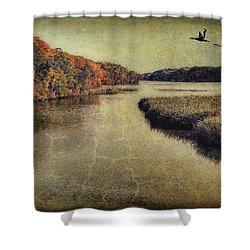 Dreary Autumn Shower Curtain