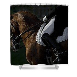 Shower Curtain featuring the photograph Dressage D5284 by Wes and Dotty Weber