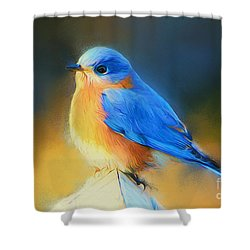 Dressed In Blue Shower Curtain