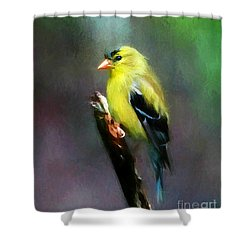Dressed To Kill Shower Curtain by Tina  LeCour