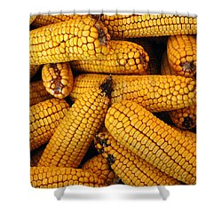 Dried Corn Cobs Shower Curtain