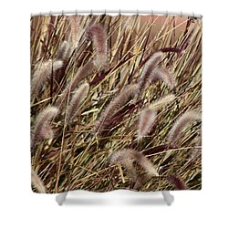 Dried Grasses In Burgundy And Toasted Wheat Shower Curtain