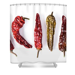 Dried Peppers Lined Up Shower Curtain