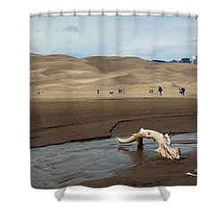 Drift Wood And Dunes Shower Curtain