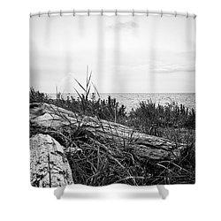 Drift Wood Shower Curtain by Karen Stahlros