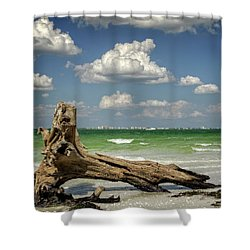 Driftwood And Fort Myers Shower Curtain