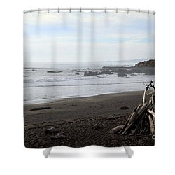 Driftwood And Moonstone Beach Shower Curtain by Linda Woods