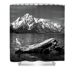 driftwood and Mt. Moran Shower Curtain