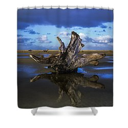 Driftwood And Reflection Shower Curtain