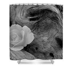Driftwood And Roses Shower Curtain