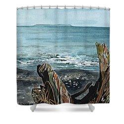 Driftwood Shower Curtain by Brenda Owen
