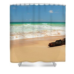 Driftwood Shower Curtain by Brian Harig