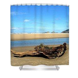 Driftwood Garden Shower Curtain by Will Borden