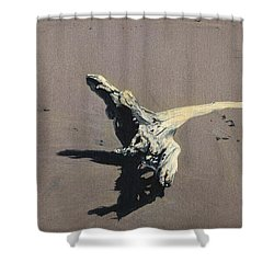 Coastal Driftwood Shower Curtain