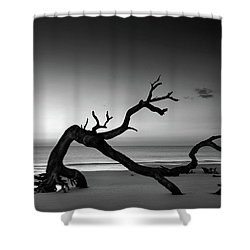 Driftwood Morning In Black And White Shower Curtain