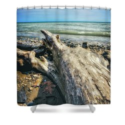 Driftwood On Beach - Grant Park - Lake Michigan Shoreline Shower Curtain by Jennifer Rondinelli Reilly - Fine Art Photography