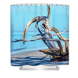 Driftwood On Jekyll Shower Curtain