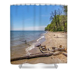 Shower Curtain featuring the photograph Driftwood On The Beach by Charles Kraus
