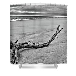 Driftwood On The Beach In Black And White Shower Curtain by Paul Ward