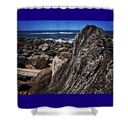 Driftwood Rocks Water Shower Curtain