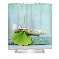 Driftwood Stones And A Gingko Leaf Shower Curtain by Priska Wettstein