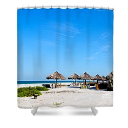 Drinks On Me Shower Curtain by Margie Amberge
