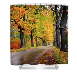 Shower Curtain featuring the photograph Driving On The Autumn Roads by Dmytro Korol