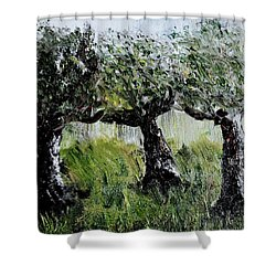 Shower Curtain featuring the painting Drizzle by Evelina Popilian