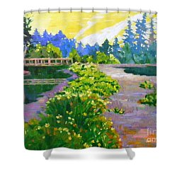 Drizzling Seaside Shower Curtain