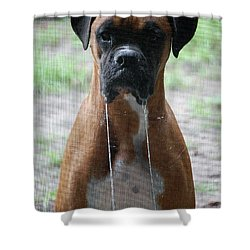 Drool To The Extreme Shower Curtain by DigiArt Diaries by Vicky B Fuller