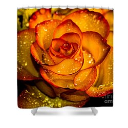 Droplet Rose Shower Curtain