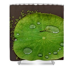 Droplets I Shower Curtain