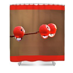 Droplets Shower Curtain by Nancy Landry