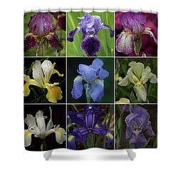 Drops Of Iris -- A Collage Shower Curtain by Richard Cummings