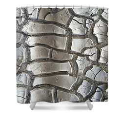 Drought 5 Shower Curtain