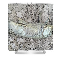 Drought Fish Shower Curtain